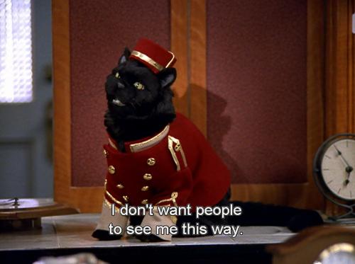 Obligatory Salem GIF