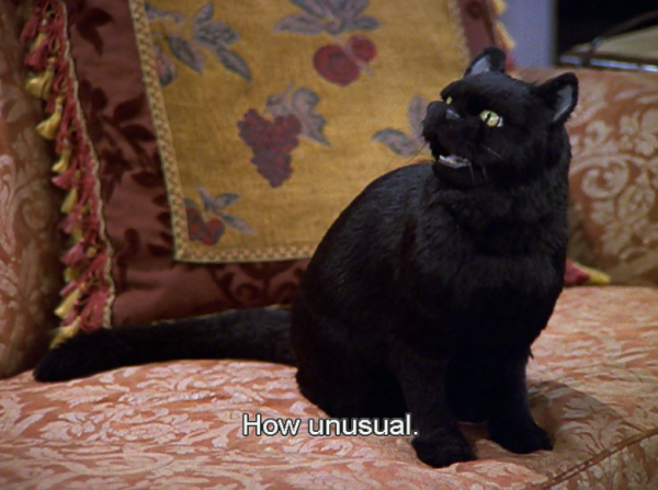 But what would a blog be without Salem?
